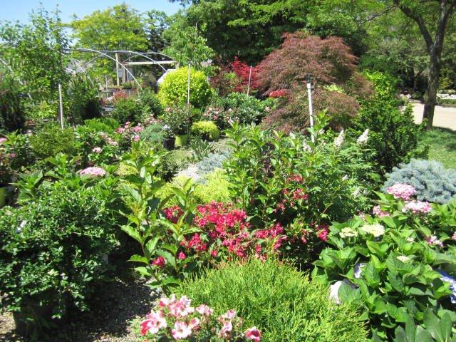 July Garden Center