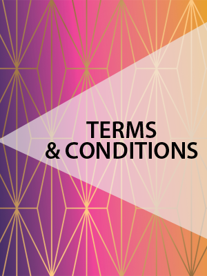 TermsConditions