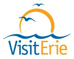visiterie_logo 1